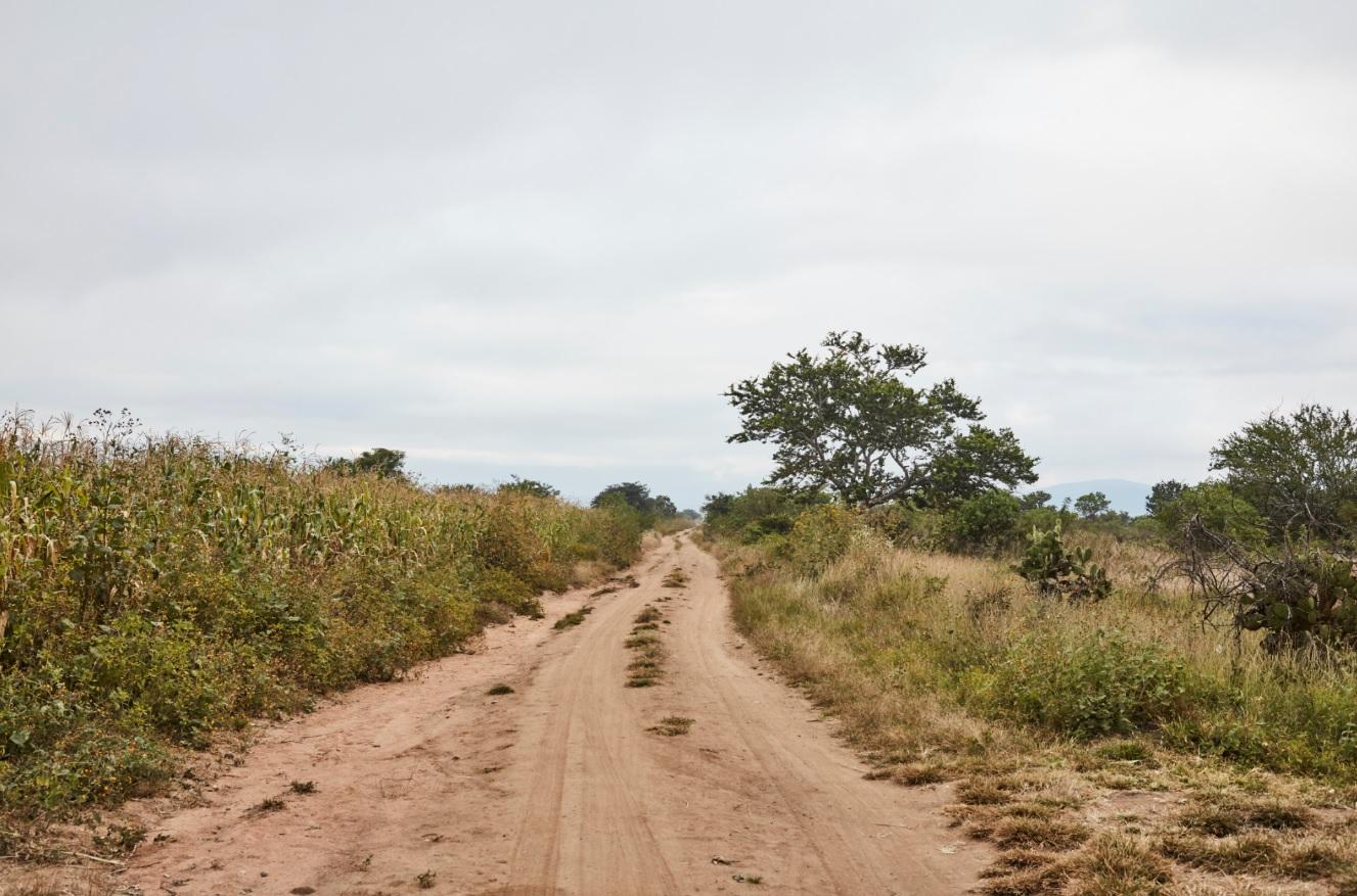 Dirt road LR GH.jpg