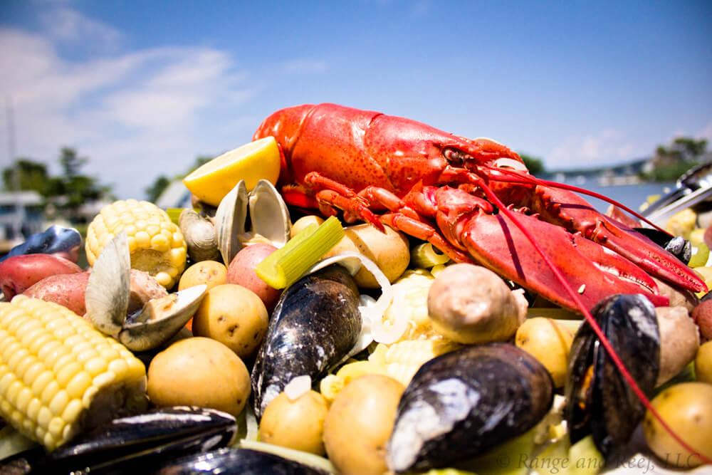 shrimp lobster 5.jpg
