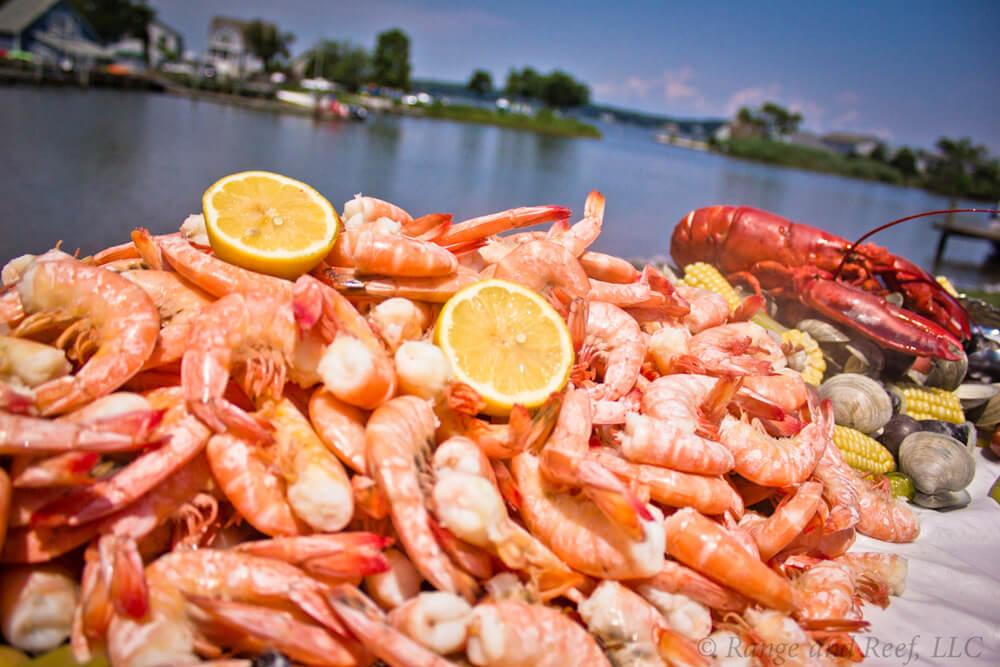 shrimp lobster 6.jpg
