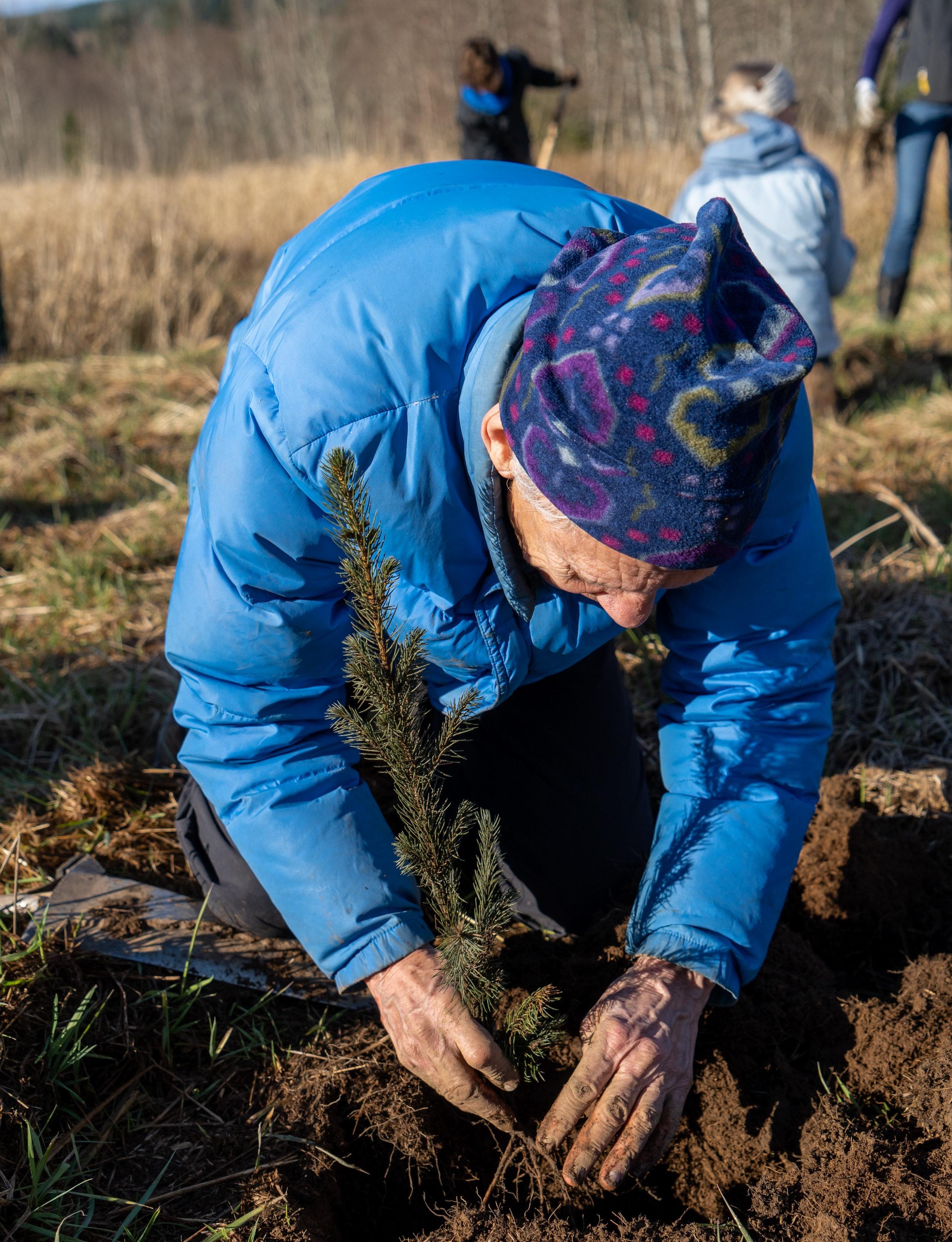 1.12.19_Salmon-Creek-Planting_Kory-Kirby_127.jpg