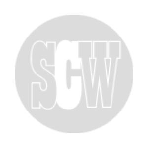 scw web.png