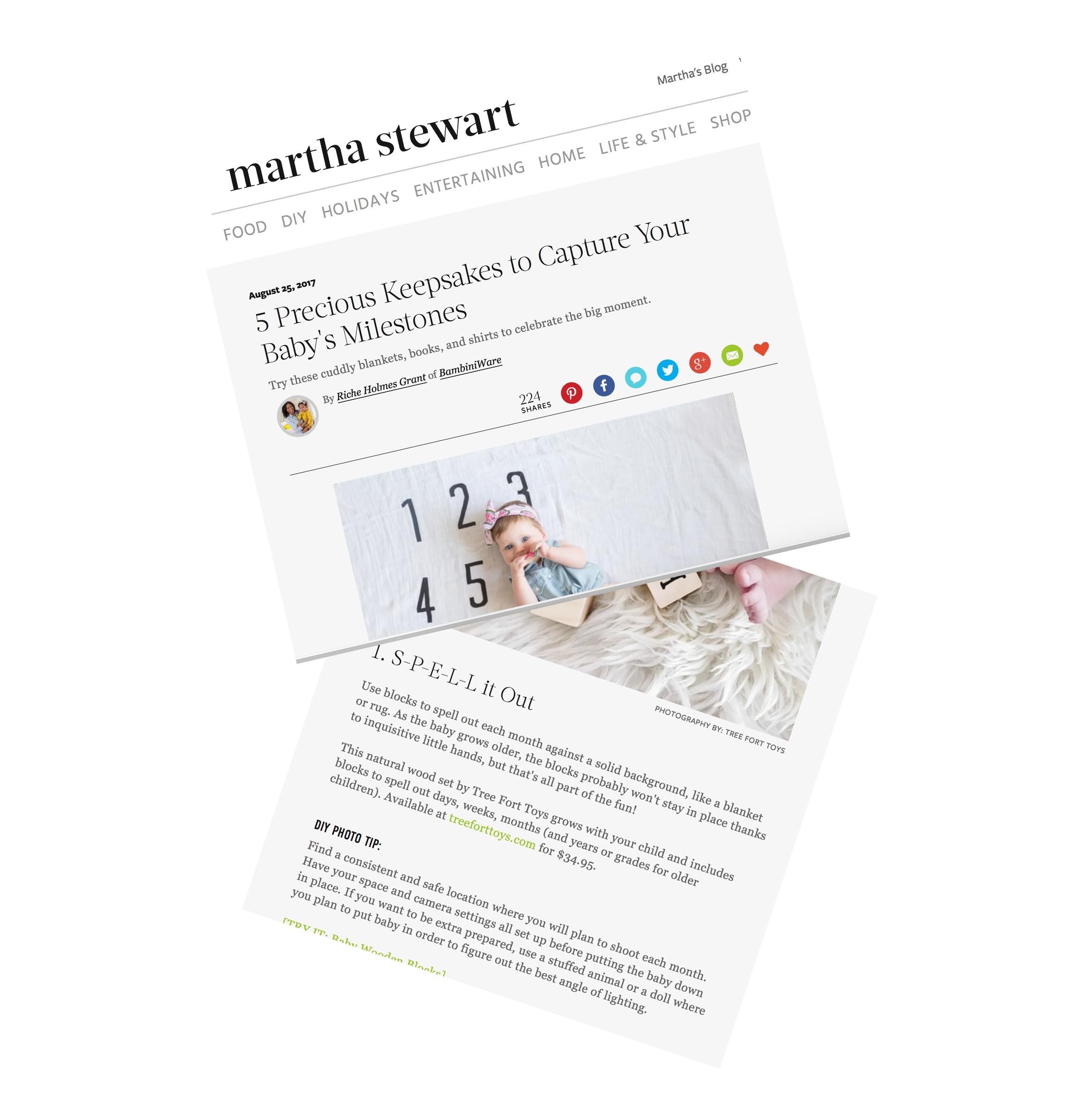 MarthaStewartDIY(pp_w899_h937).jpg