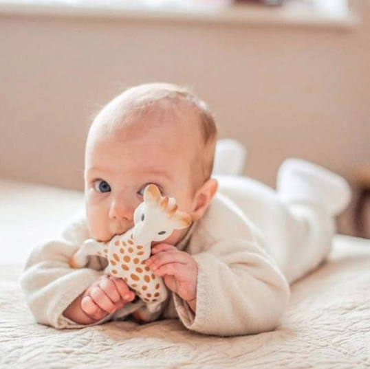 Sophie la Giraffe Baby Teething Toy