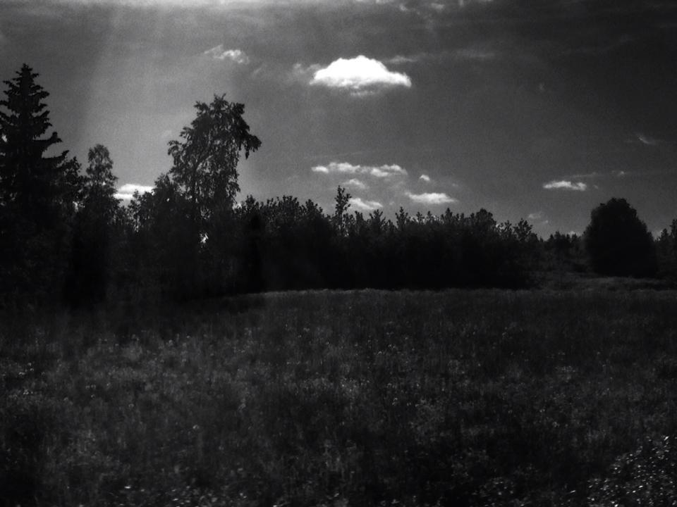 landscape+series+2.jpg
