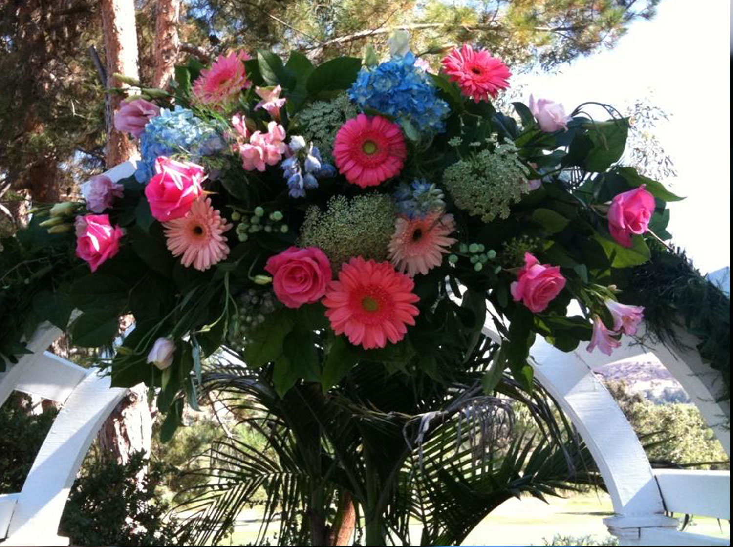 Beautiful Pinks and Blue