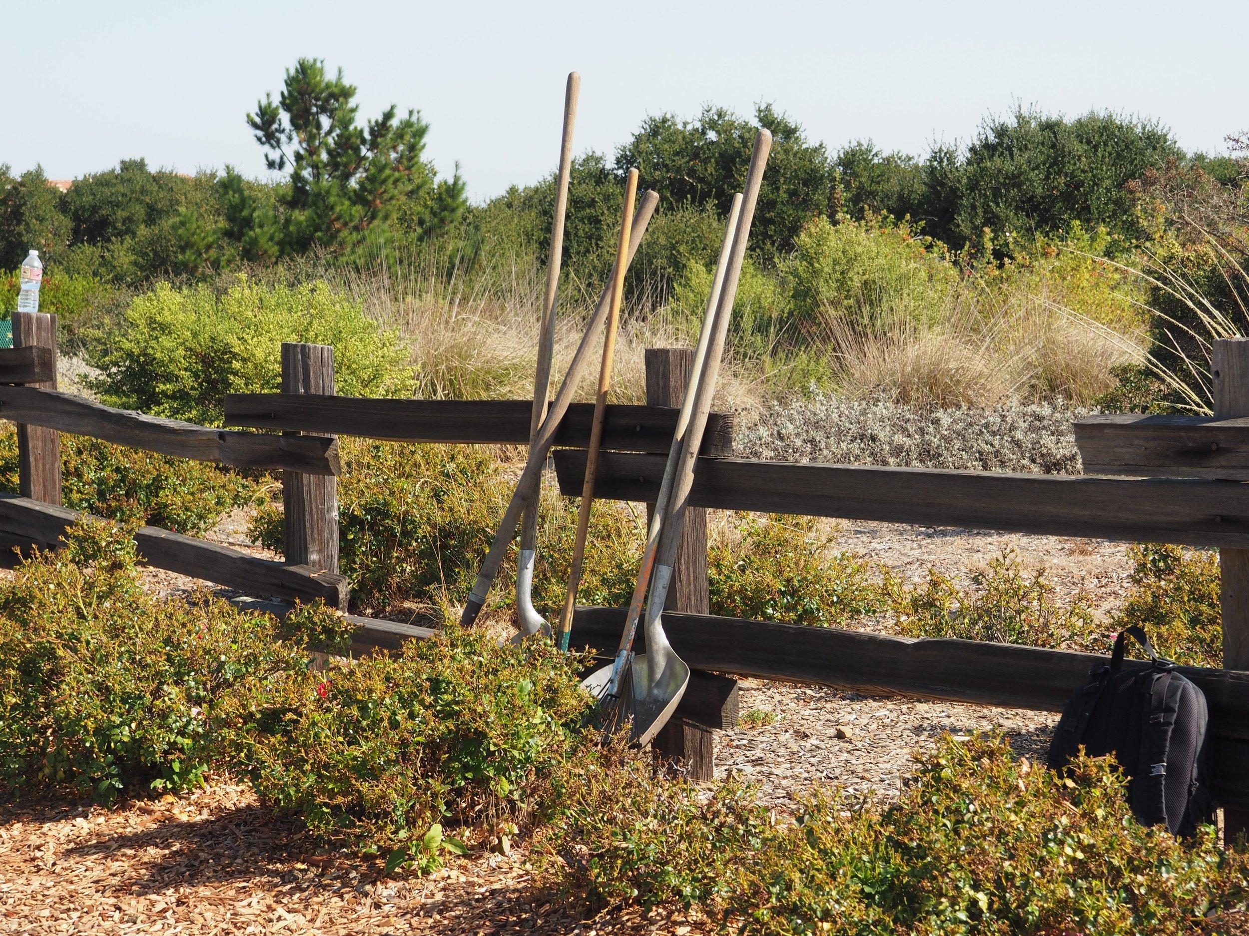Shovels waiting at Vista Park