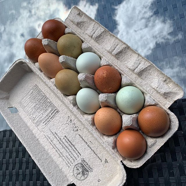 These eggs. #libertyfarms