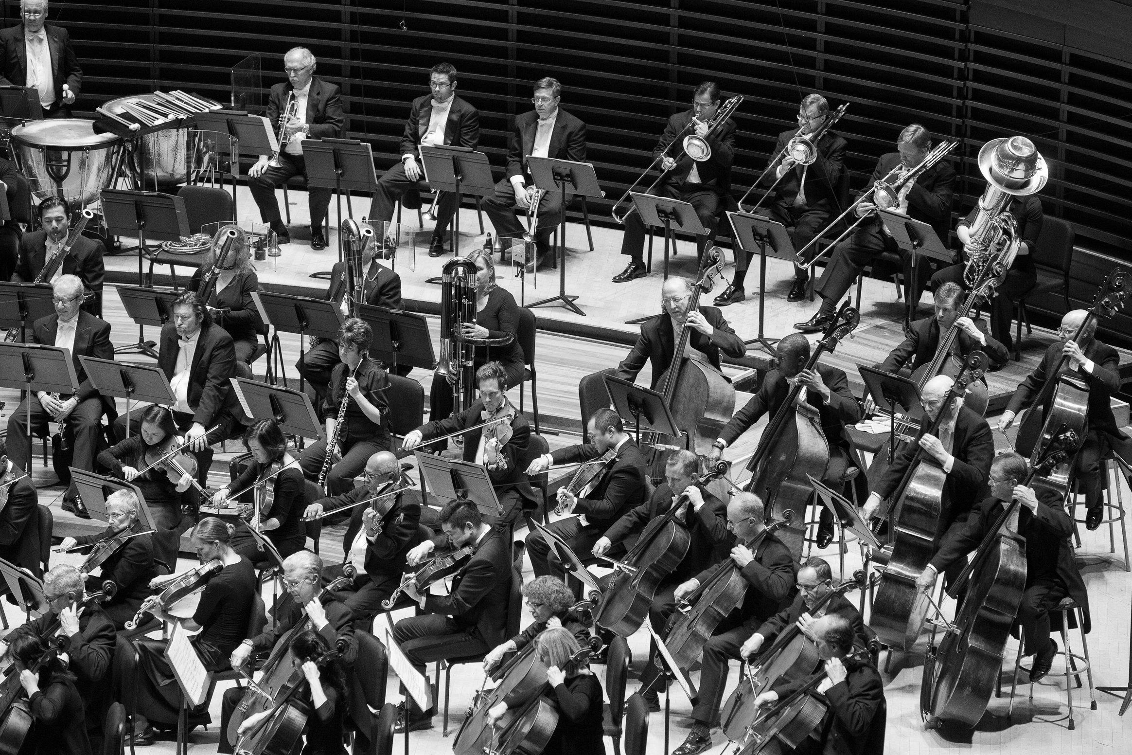 Cellos-Violas-Basses-Winds-Brass-2015-12-03-117(JessicaGriffin).jpg