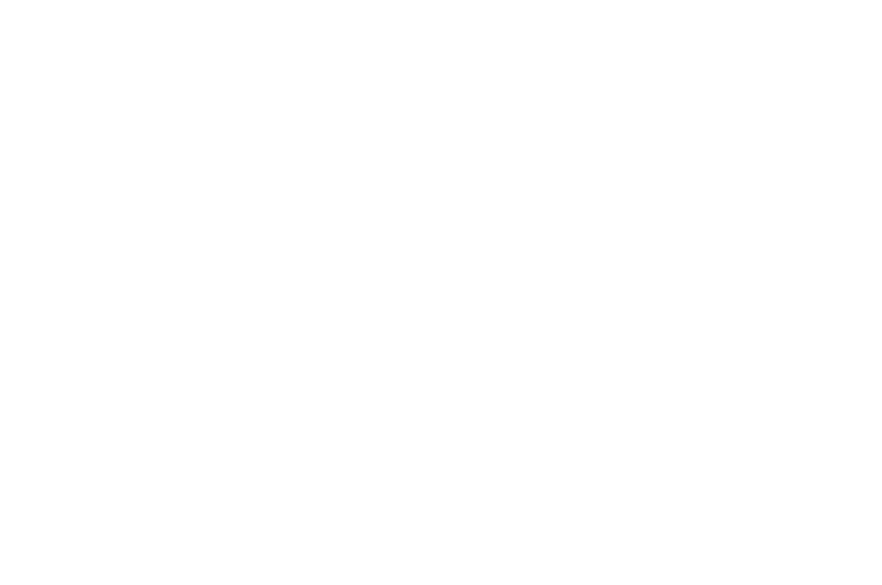 MIX MXICO Film Festival - 2019.png