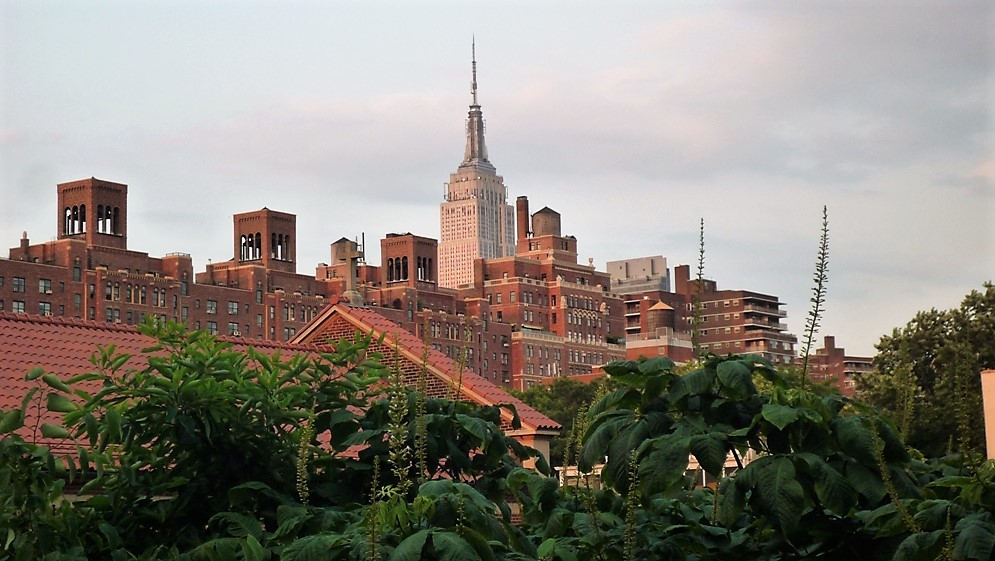view from the High Line Park