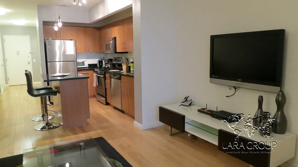 Financial District Luxury Furnished 1BR 4.jpg