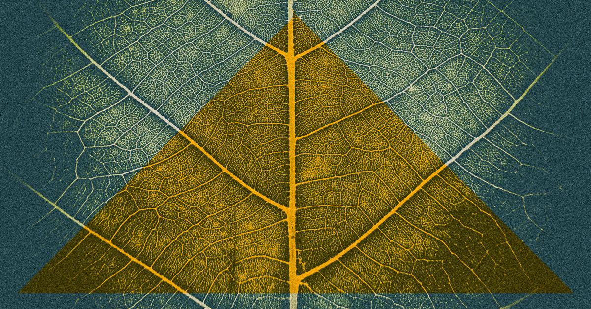 Memberhsip linkedin-2.jpg