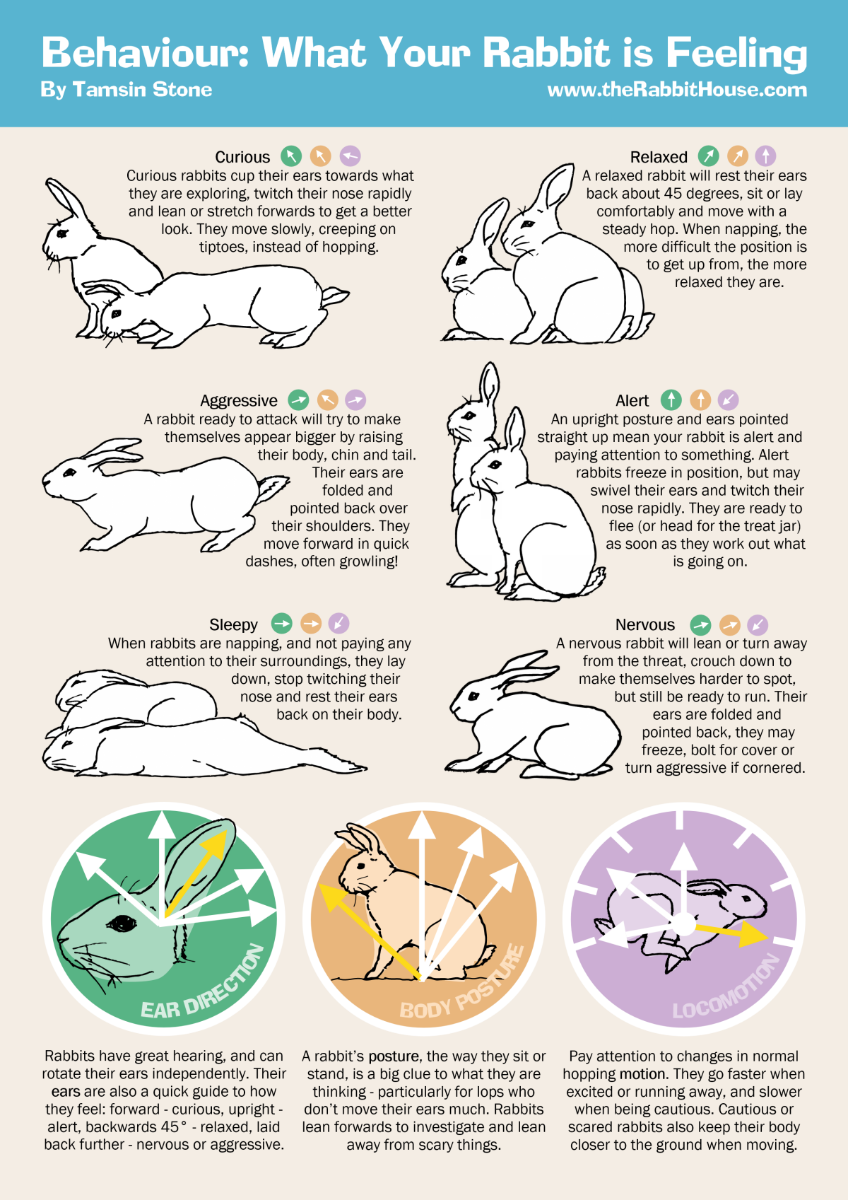 Body Language \u2014 Pets and People in Harmony