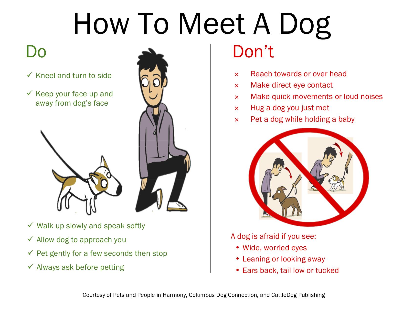 How to Meet a Dog.jpg