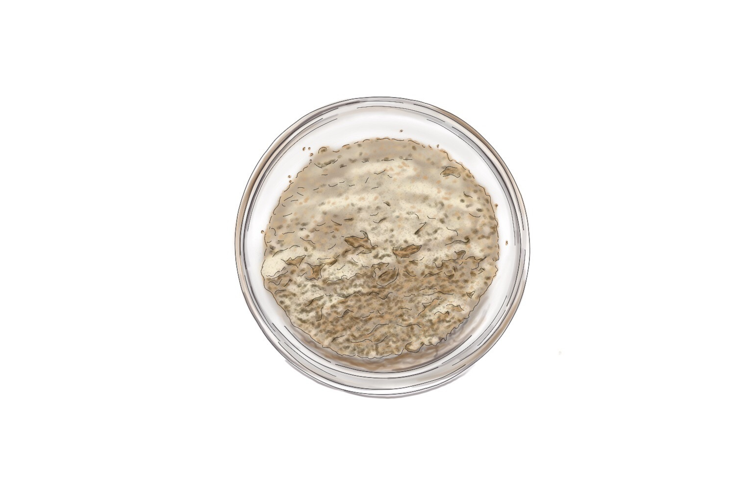 Bentonite Clay - A non-comedogenic clay derived from volcanic ash that has been used to heal skin for centuries. Bentonite Clay removes toxins from the body by drawing out impurities. It is especially beneficial for acne-prone skin by unclogging pores and detoxifying the skin to calm inflammation. Bentonite Clay also gives your skin a gentle exfoliation, helping to even out your skin tone, making it feel soft and smooth, and helps with the overall glow factor. Bentonite Clay is one of the main ingredients in the Clay Mask.