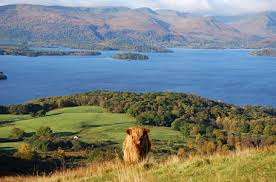 LOCH LOMOND & THE TROSSACHS - COMPLETED: HAVEN'T STARTED