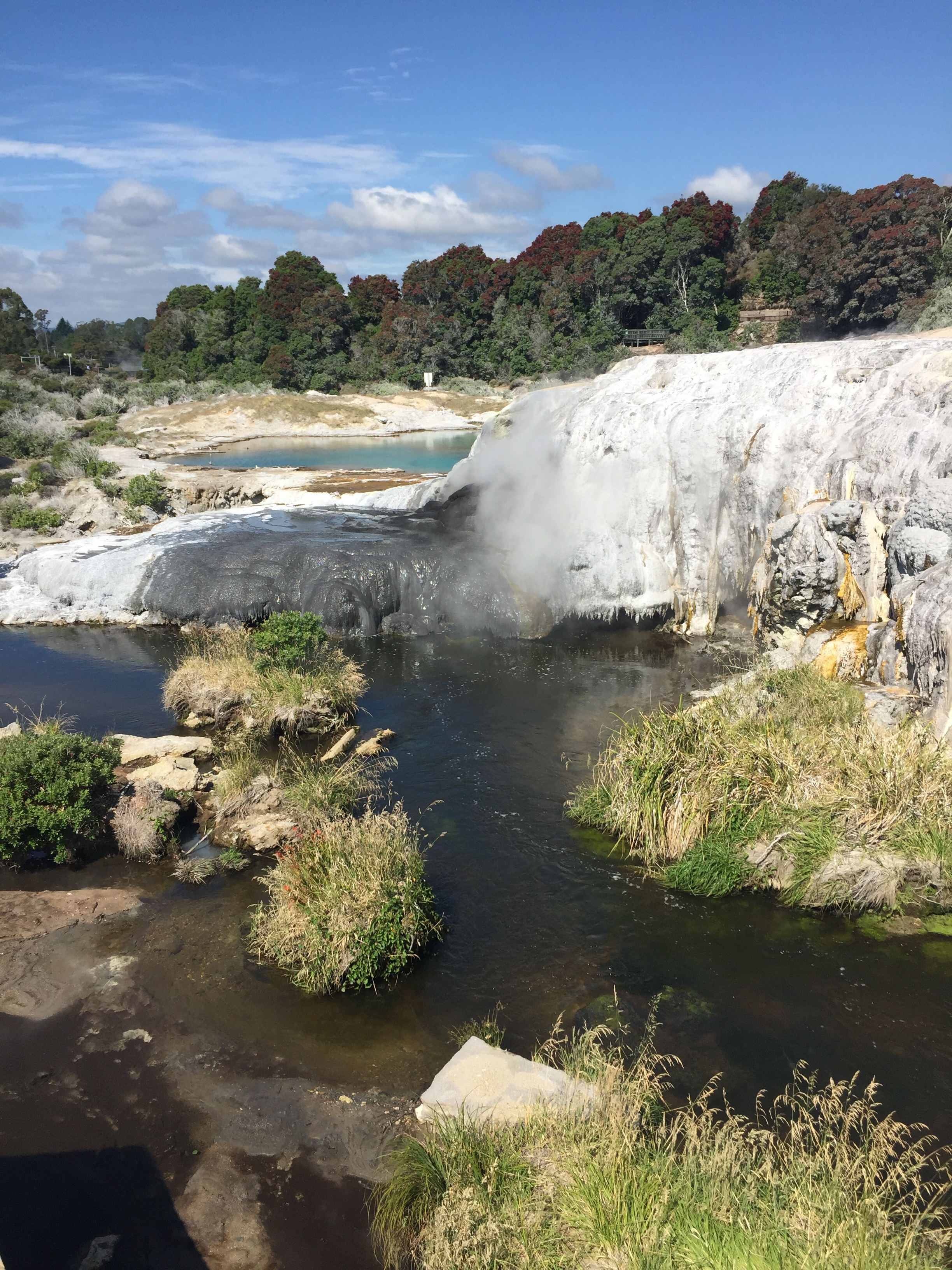 BUBBLING ROTORUA - COMPLETED: ONGOING