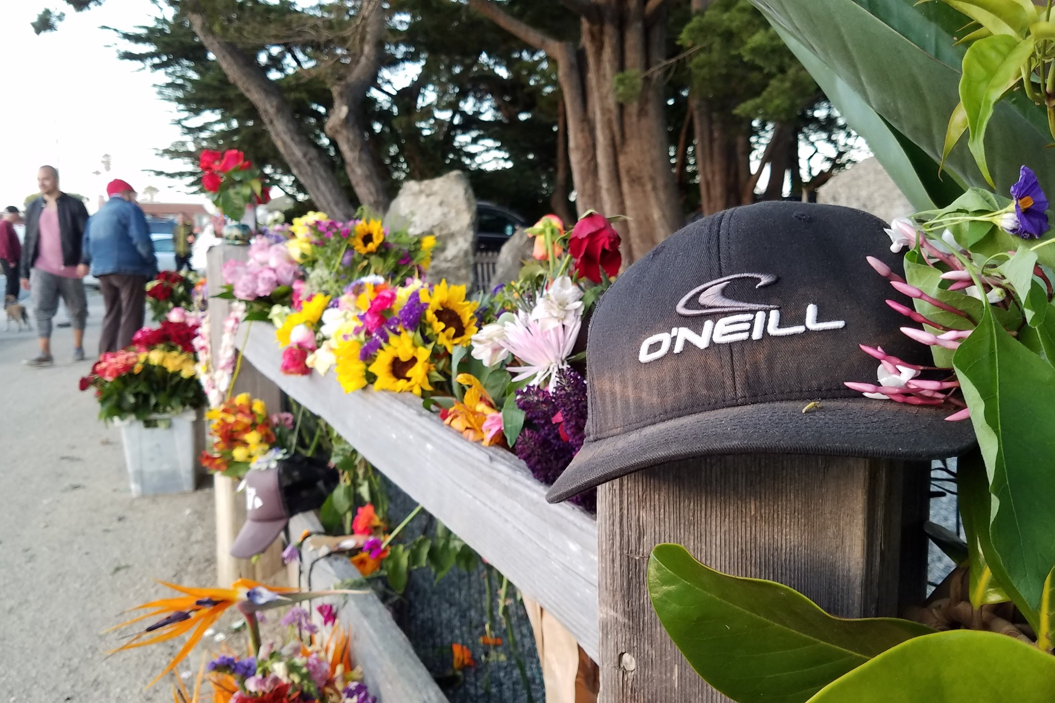 Paddle Out Will Honor Life and Legacy of Jack O'Neill  - The regional and global surfing community remembers wetsuit pioneer Jack O'Neill days after he died at his oceanside home.
