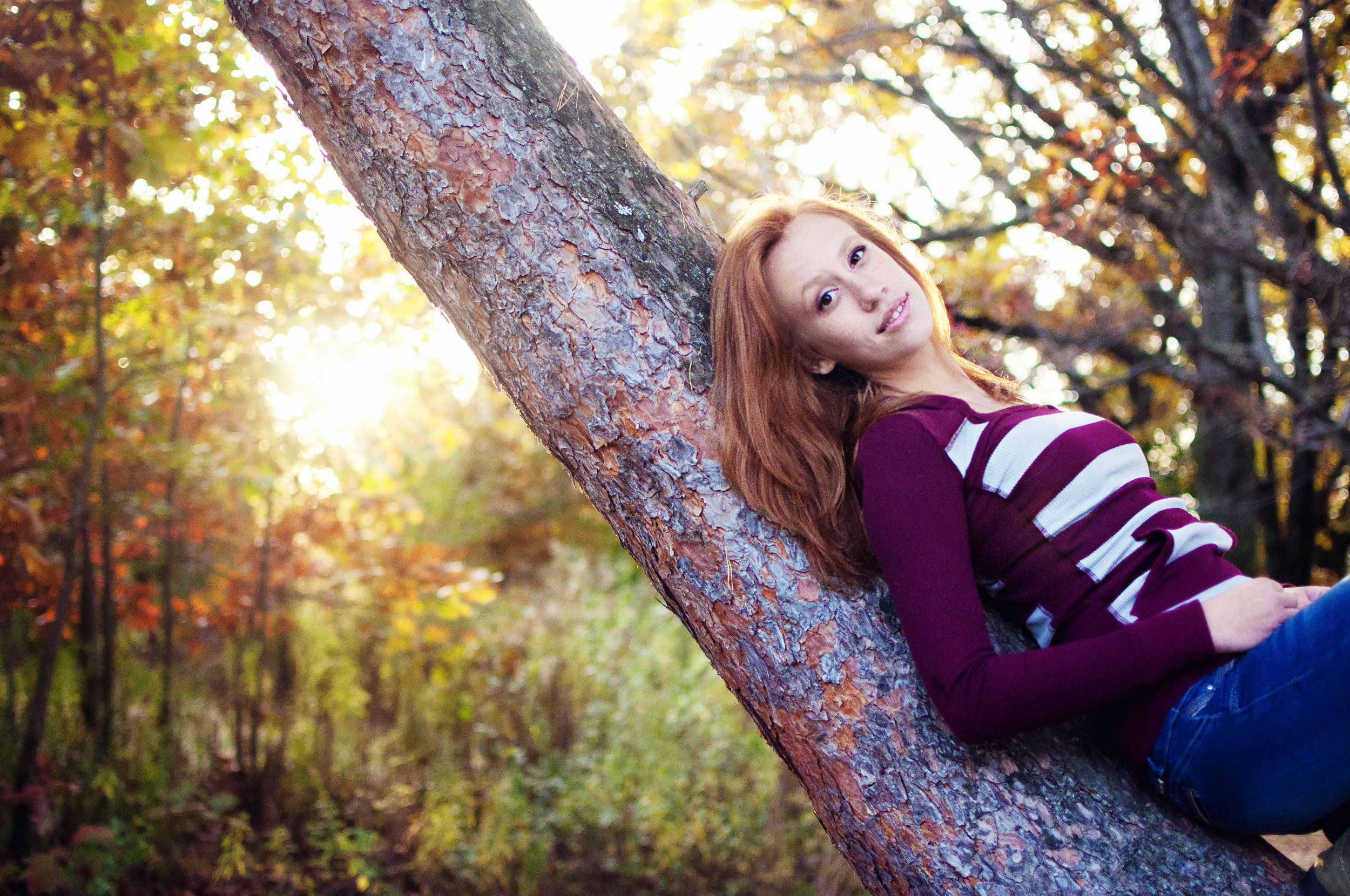 redhead high school senior model in tree during the fall or autumn