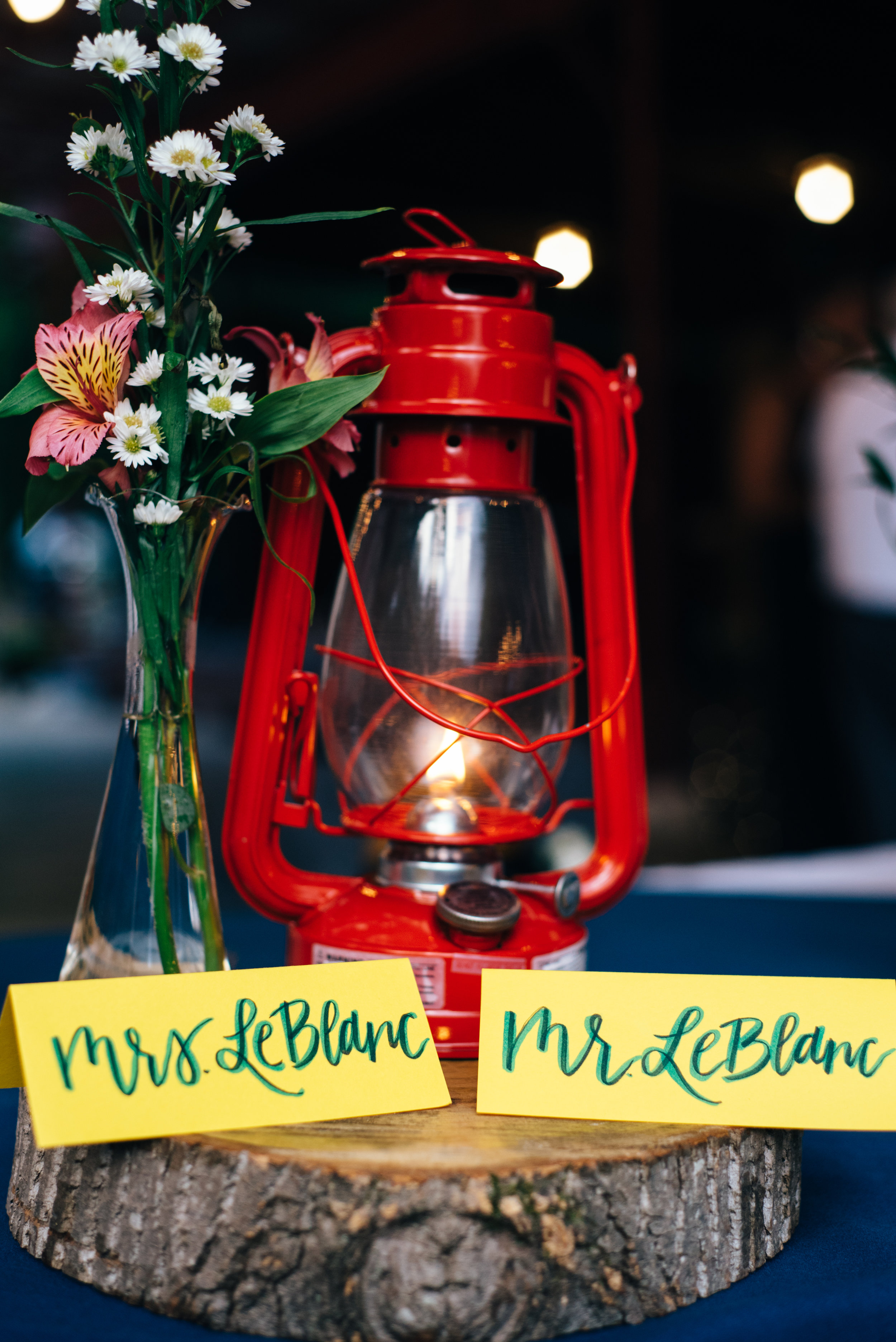Camp Themed Wedding-43.jpg