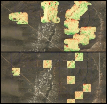 Images of rangeland captured with a MicaSense RedEdge Multispectral Camera
