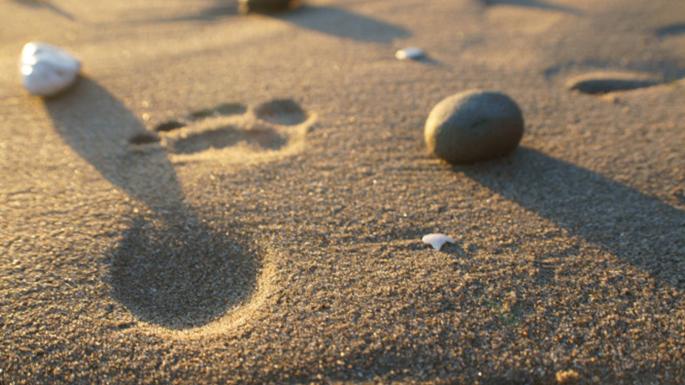 footprint-in-the-sand-a1.jpg