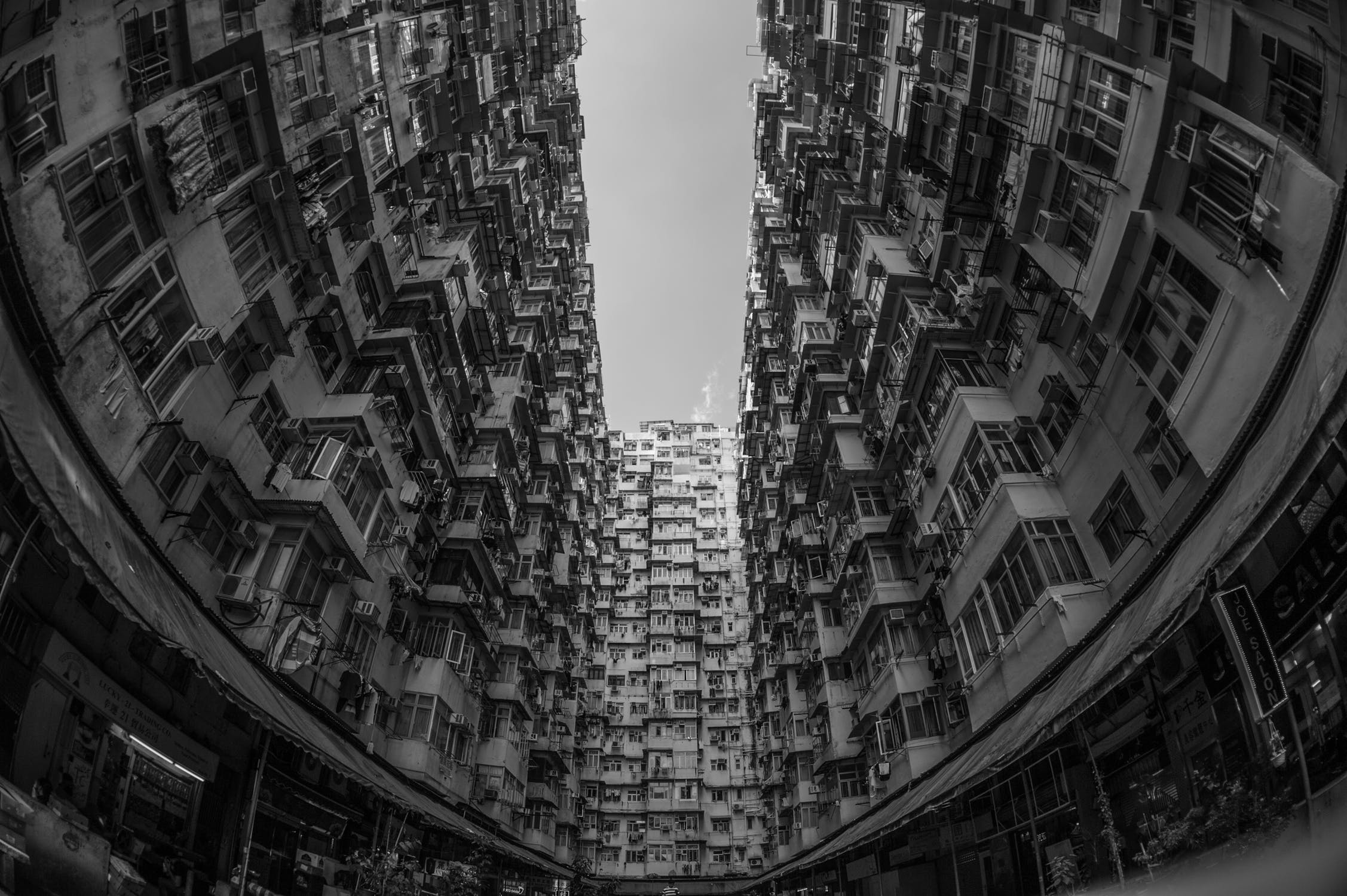 pexels-photo-584191.jpeg