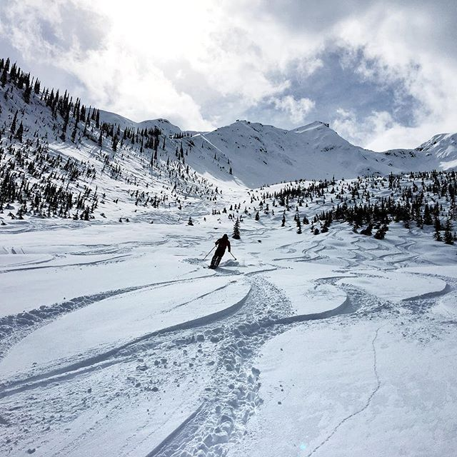 Leaving signature trails in Rogers pass thanks #gch #bestdayever ever