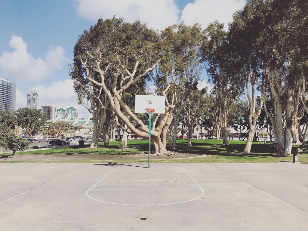 Top Basketball Courts in California - Ball Out Here.jpeg