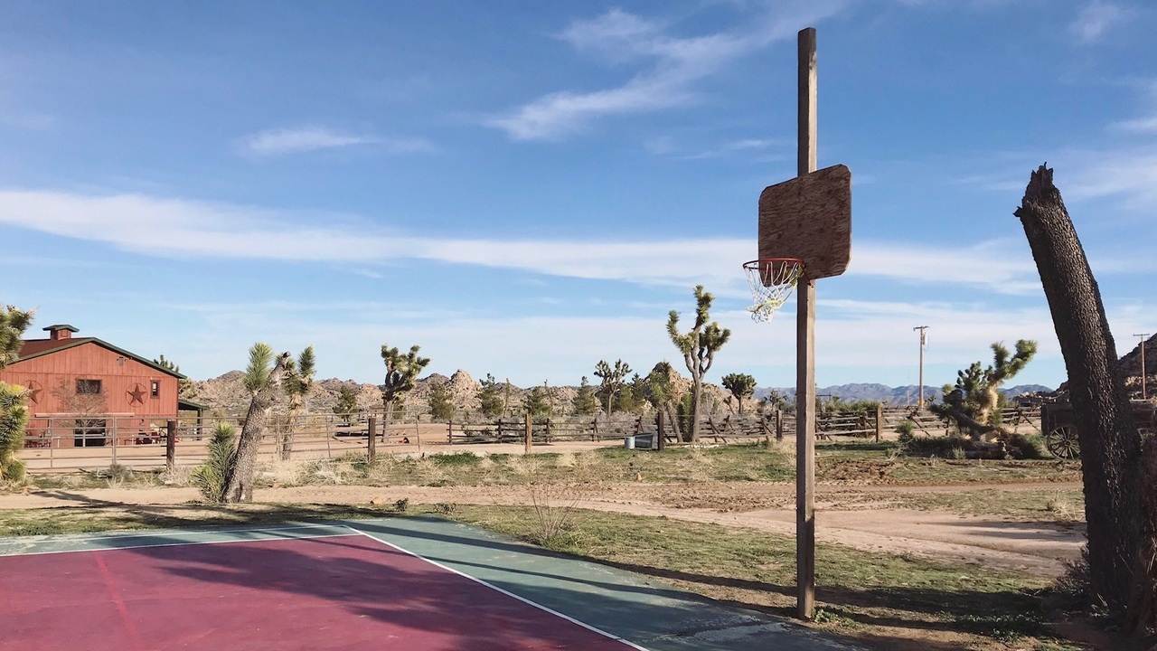 Interesting+basketball+courts+in+America