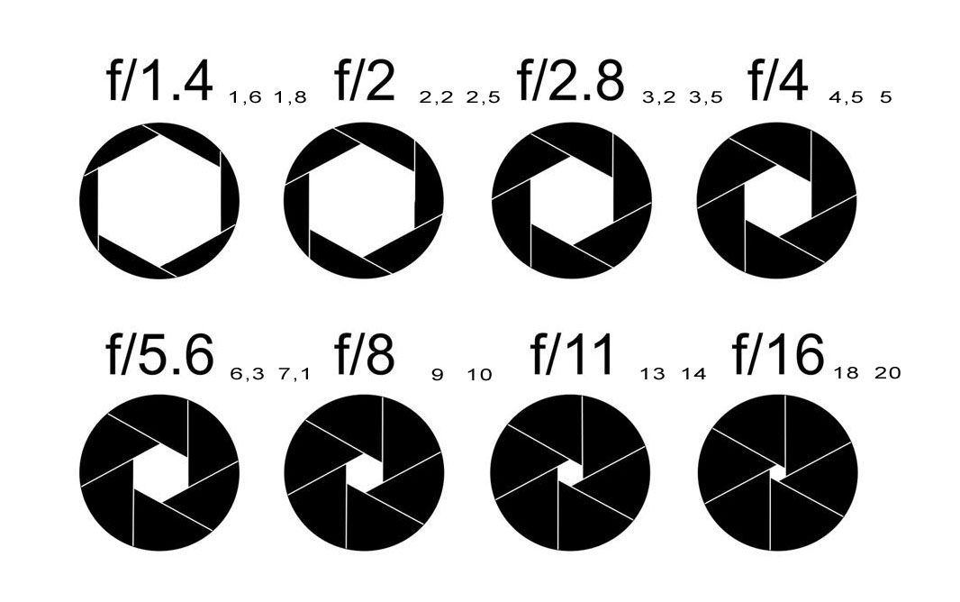 A wider aperture allows more light to enter the lens, and this allows your camera to render focus areas much better.