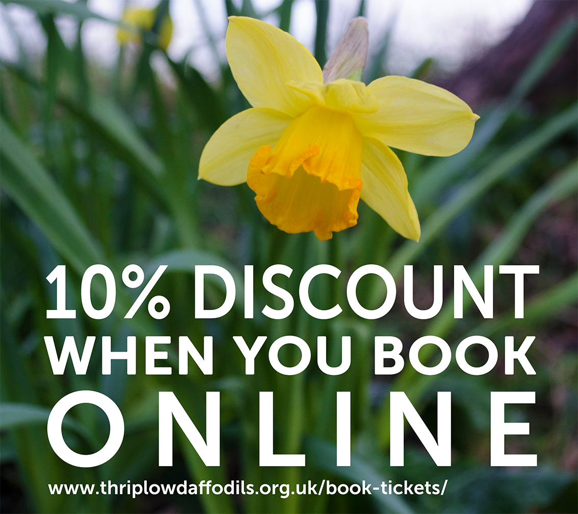 10% off when you book online.png
