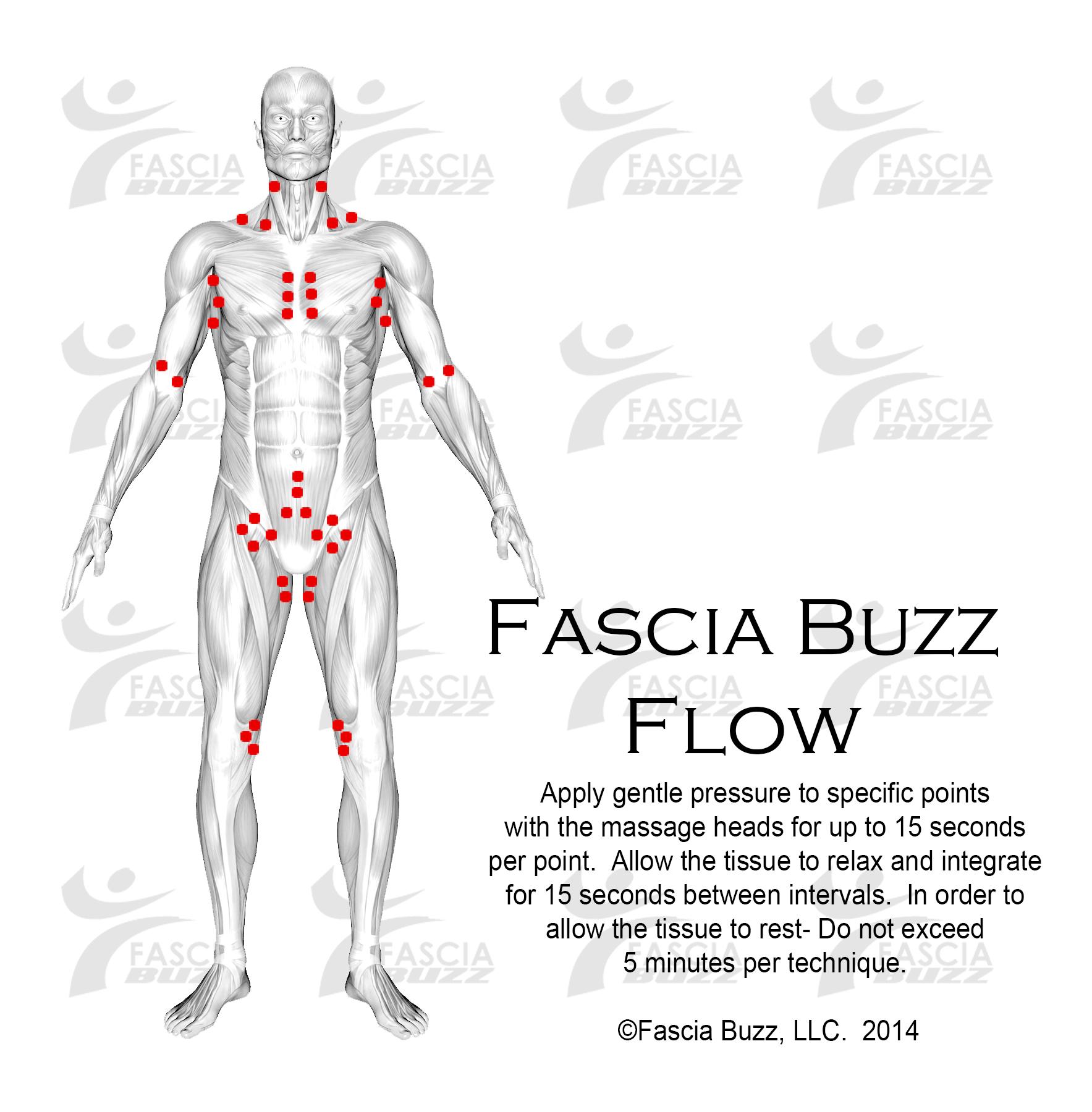 fbflowfront.jpg