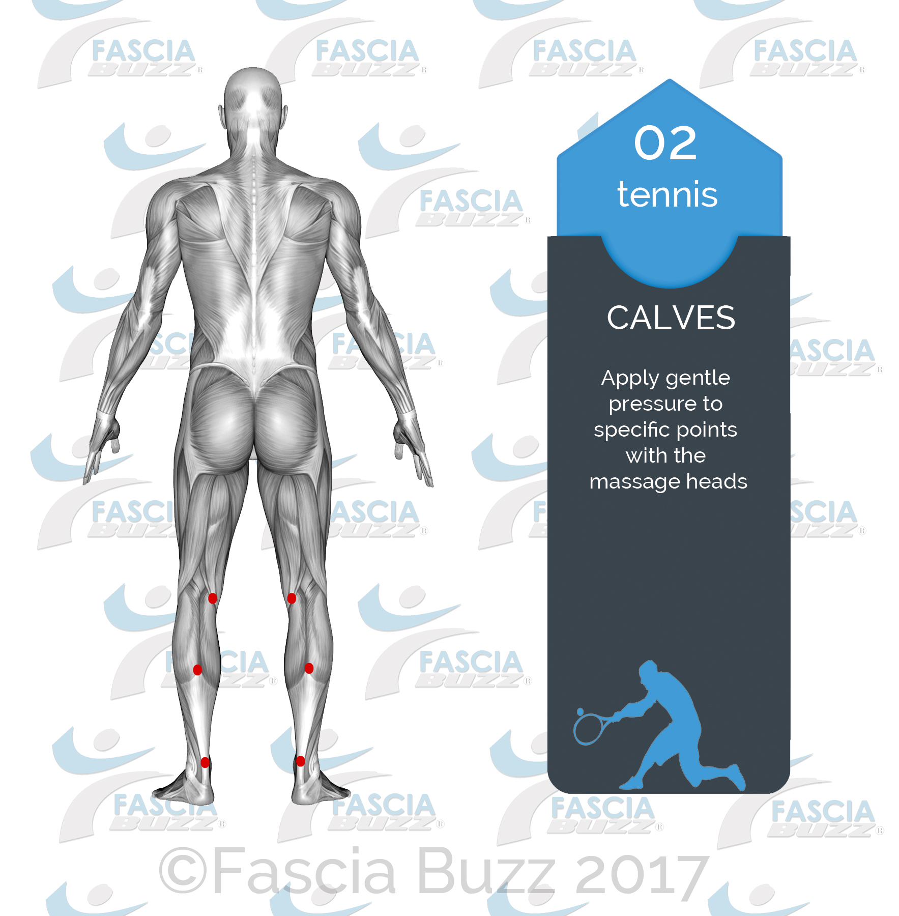 CALVES.jpg