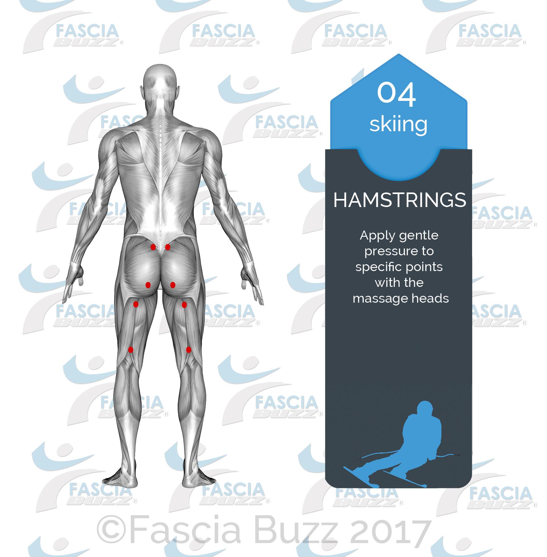 HAMSTRINGS.jpg