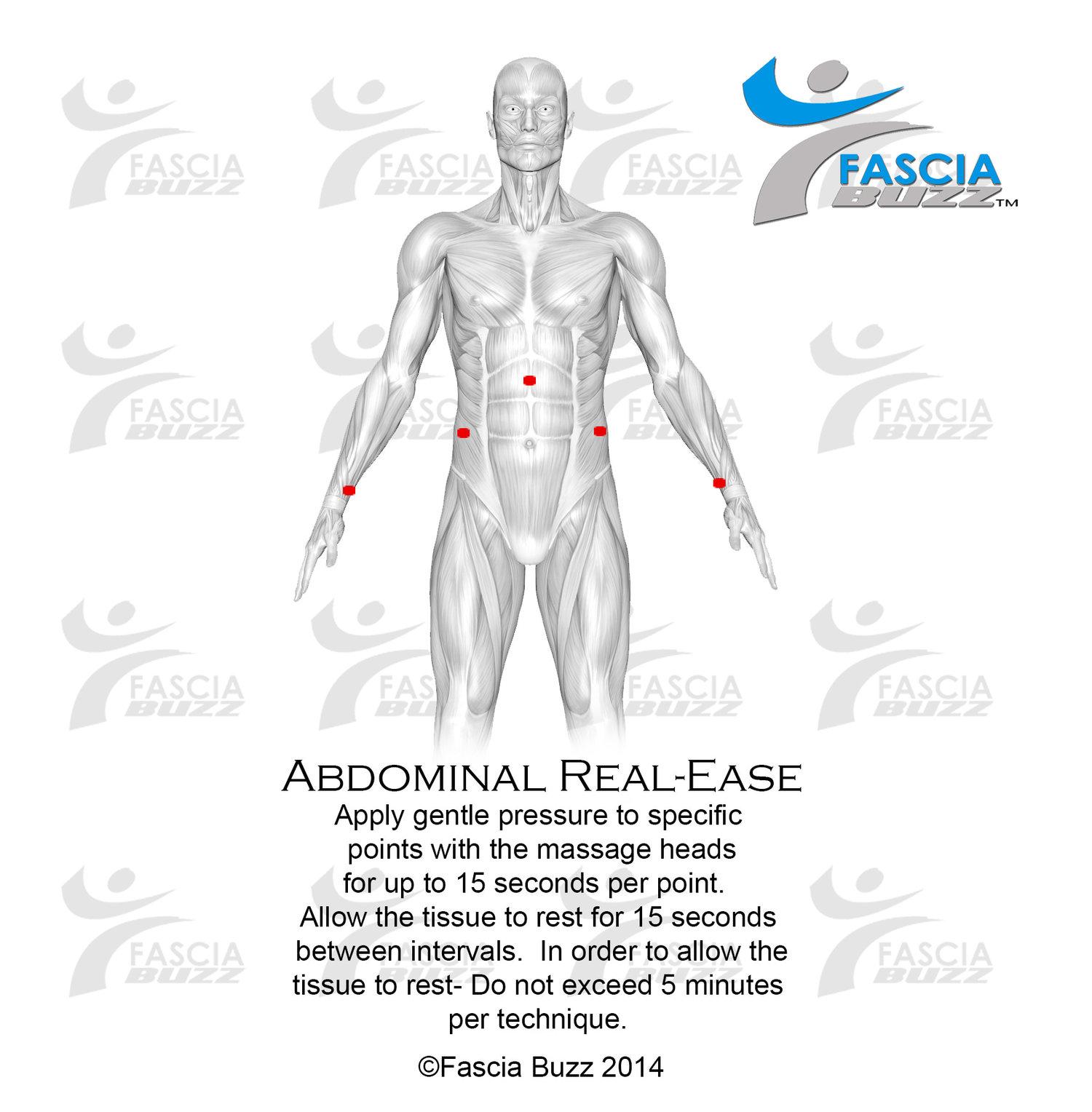real-ease_abdomen.jpg