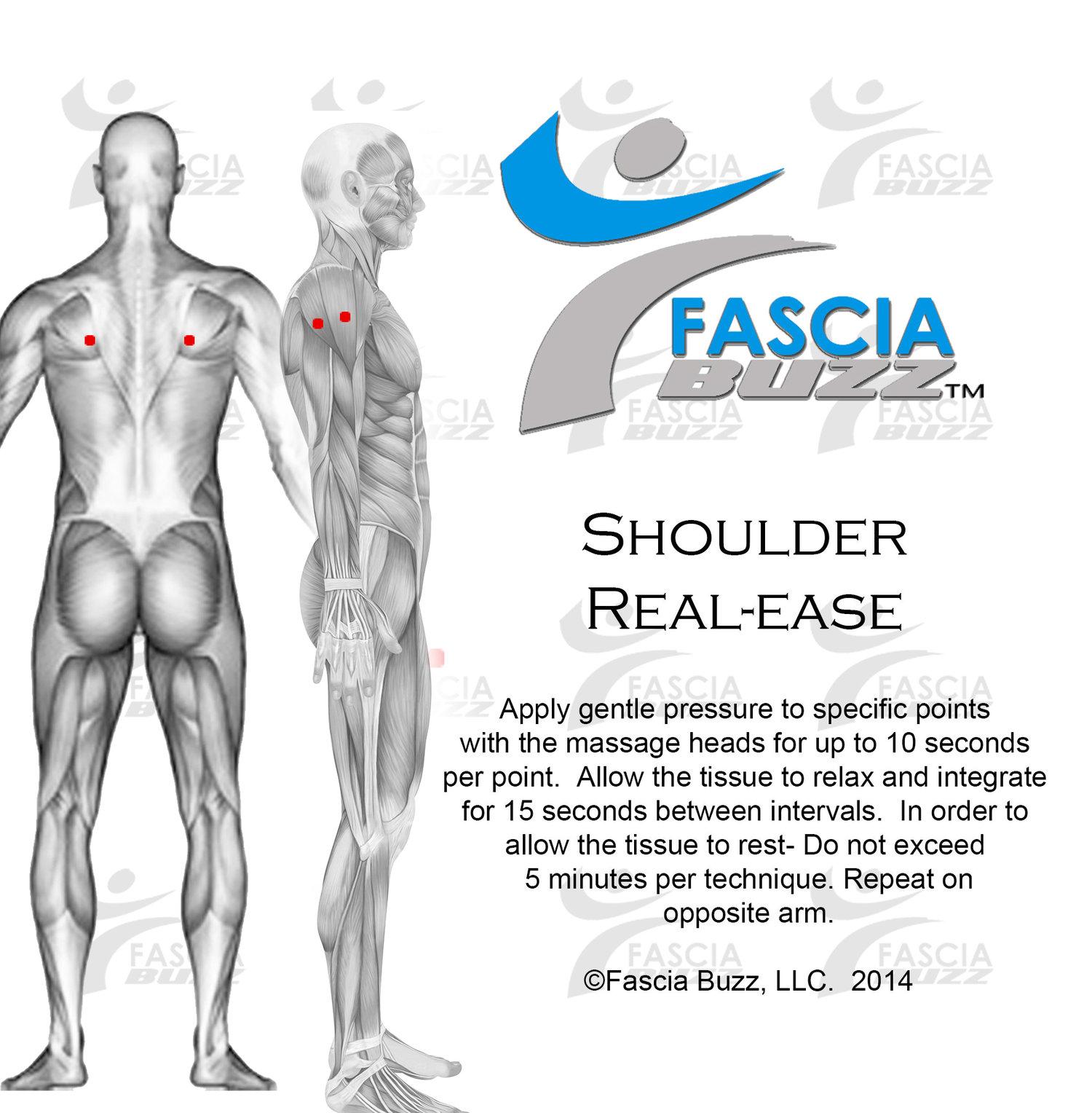 real-ease_shoulder.jpg