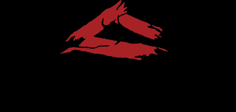 Balcones+Logo.png