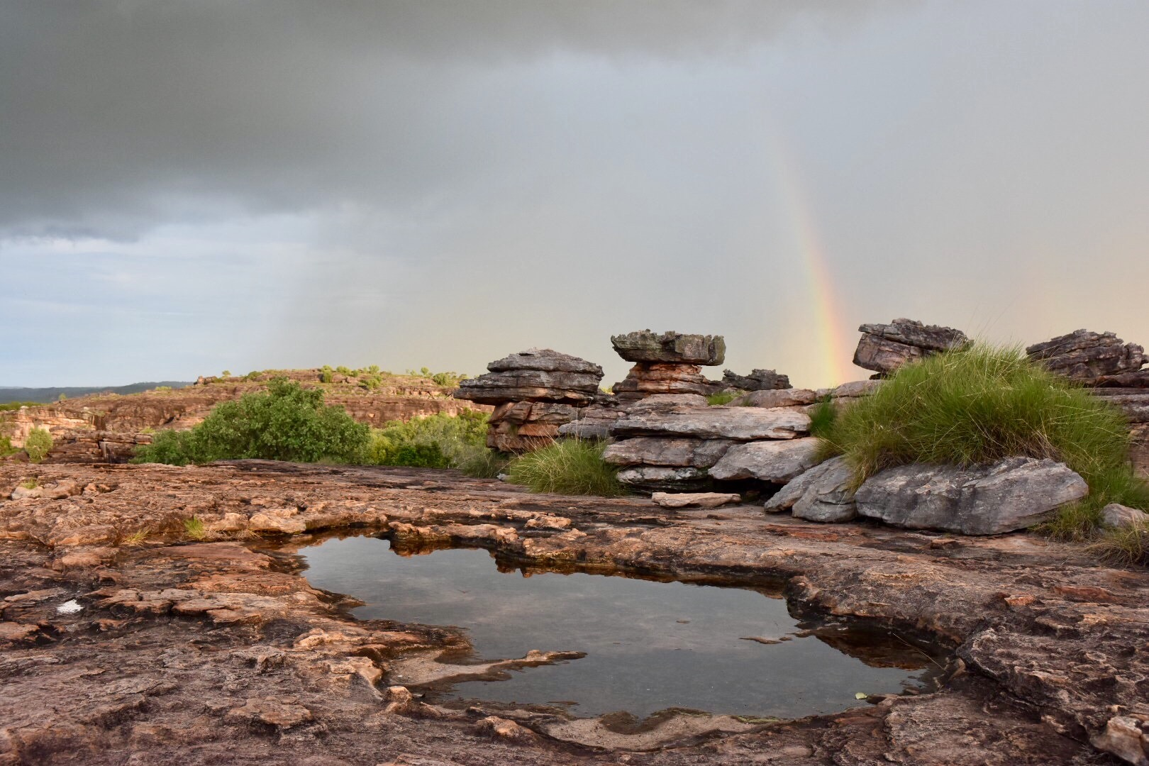 Kakadu Day Tour  Our Kakadu Day Tour showcases the rugged natural beauty and unbelievable terrains that NT is renowned for.   Discover More!