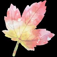 Mapleford Logo.png
