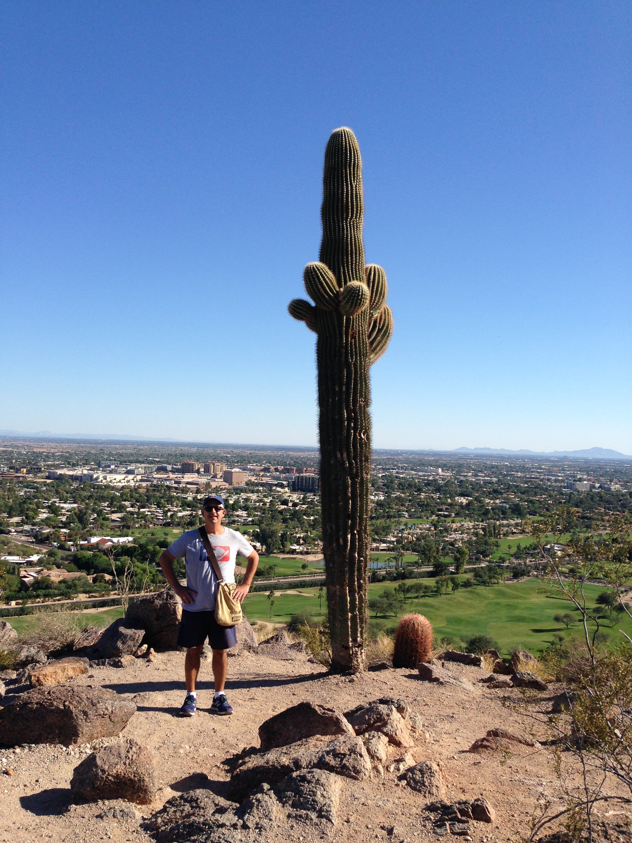 I am much shorter than this Saguaro