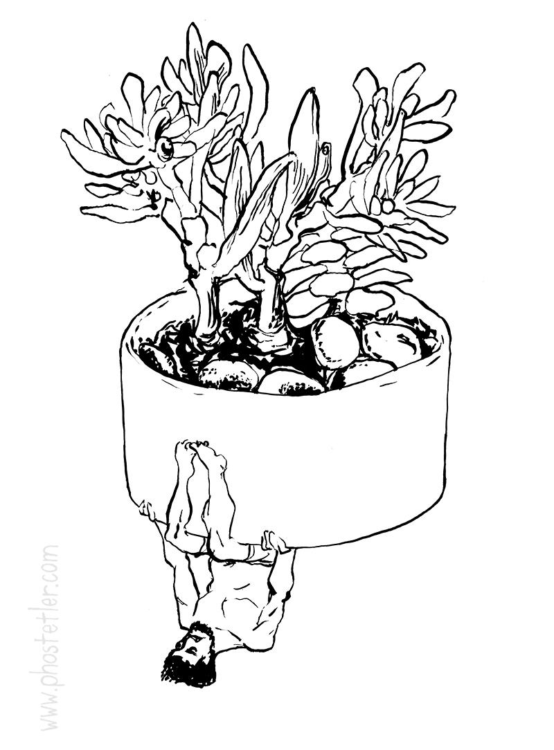 BW-succulent.jpg