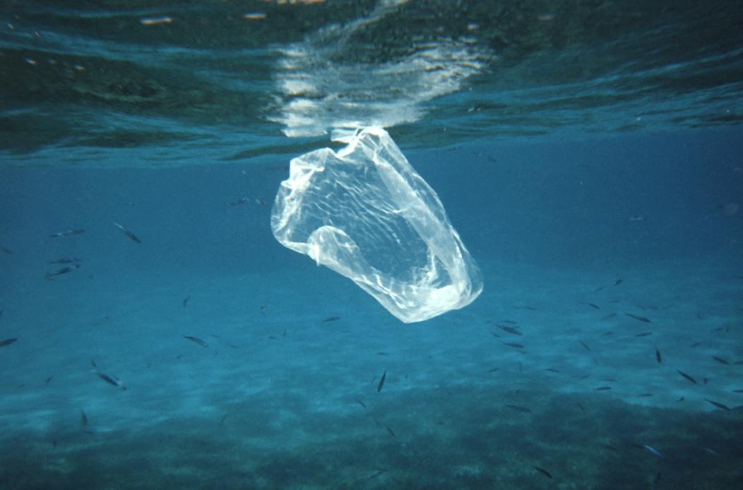 plastic back underwater.jpg