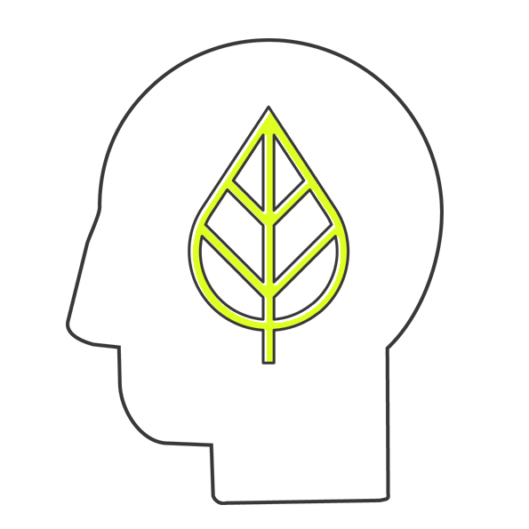 Eco Head.jpg