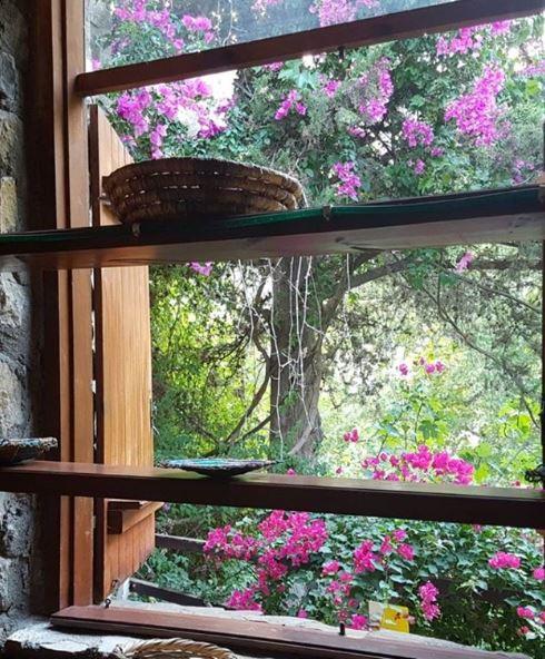 rustranslator_irina_england     holiday blues - тоска по отпуску   Good morning and welcome to another day on planet Earth! 🍃 Осталось два дня отпуска на Кипре, и потом - возвращение в холодную Англию, к переводам и ностальгии по отпуску. 🍃 Кипр - страна контрастов, засухи и колючек на юге и красивых цветущих растений на западе и севере. В этот раз много фотографировала, чтобы фотографиями поднять себе потом настроение, когда нужен будет стимул! 🍃 Но, не будем унывать и испытывать тоску по поводу уходящего отпуска (holiday blues) и лета: ⠀⠀ ✅Blues - тоска по чему-то хорошему для вас. ⠀⠀ 💬Are you having holiday blues like me? Cheer up!  Если мой пост вам оказался полезен, ставьте ❤! ⠀⠀ Если вам захочется увидеть все мои посты на одной странице, зайдите на мой сайт и прокрутите вниз. Thank you🍀