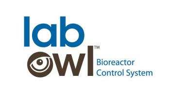 lab owl.jpg