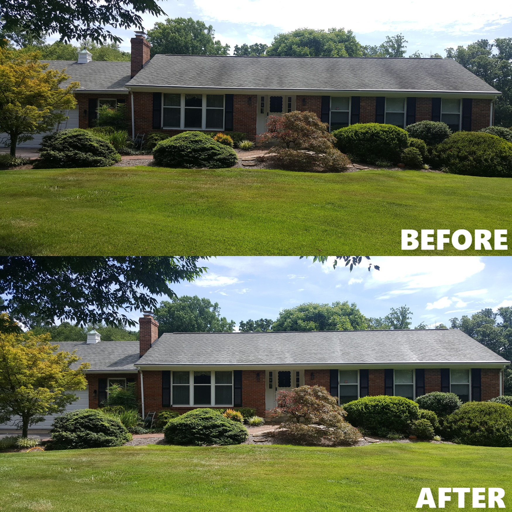 ROOF BEFORE AND AFTER 3 .jpg