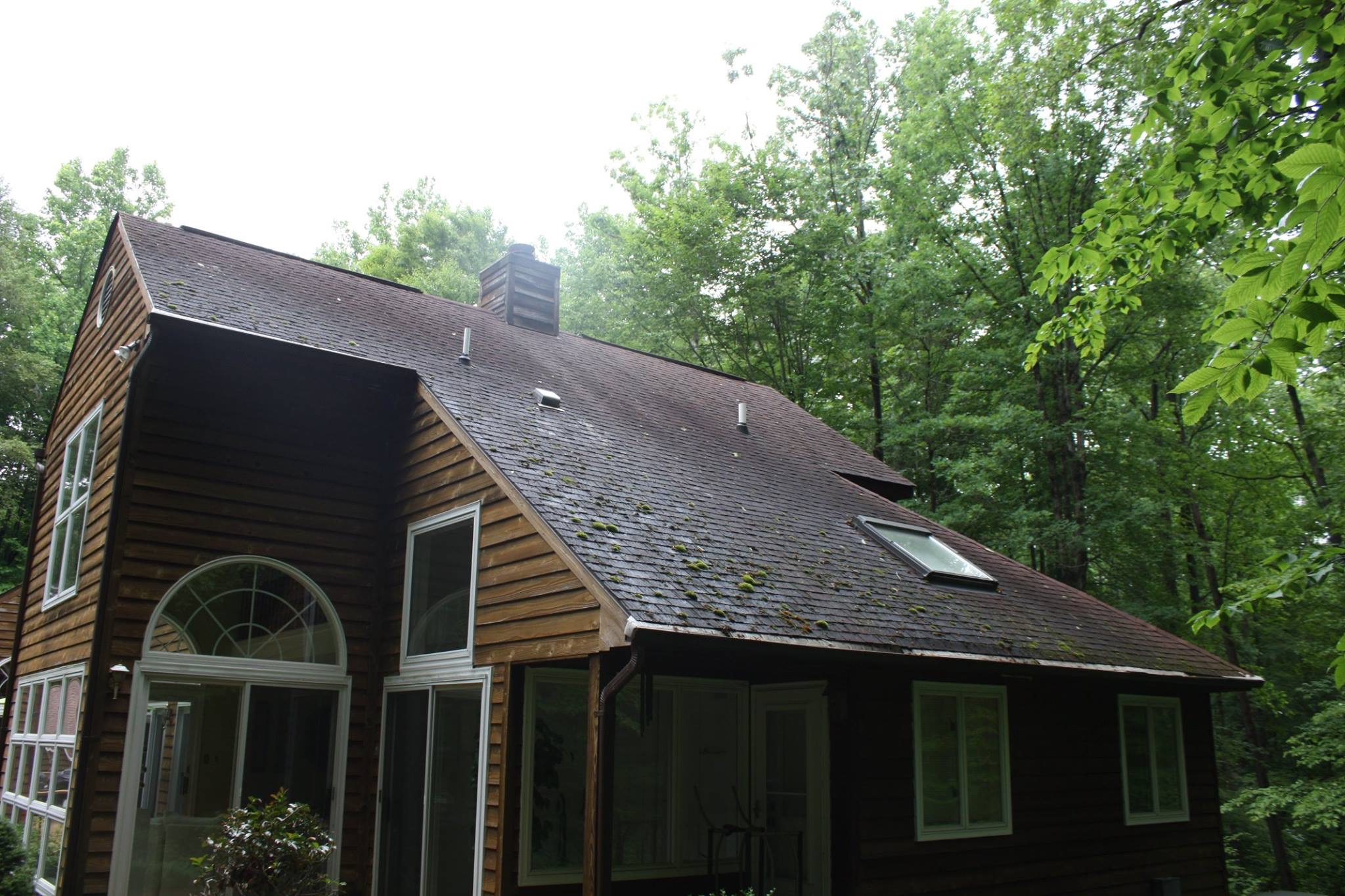Notice how the moss tends to group up on the lower regions of a slanted roof. These regions get less sun exposure because they slip into tree shadows earlier in the day and for longer than higher parts of the roof.