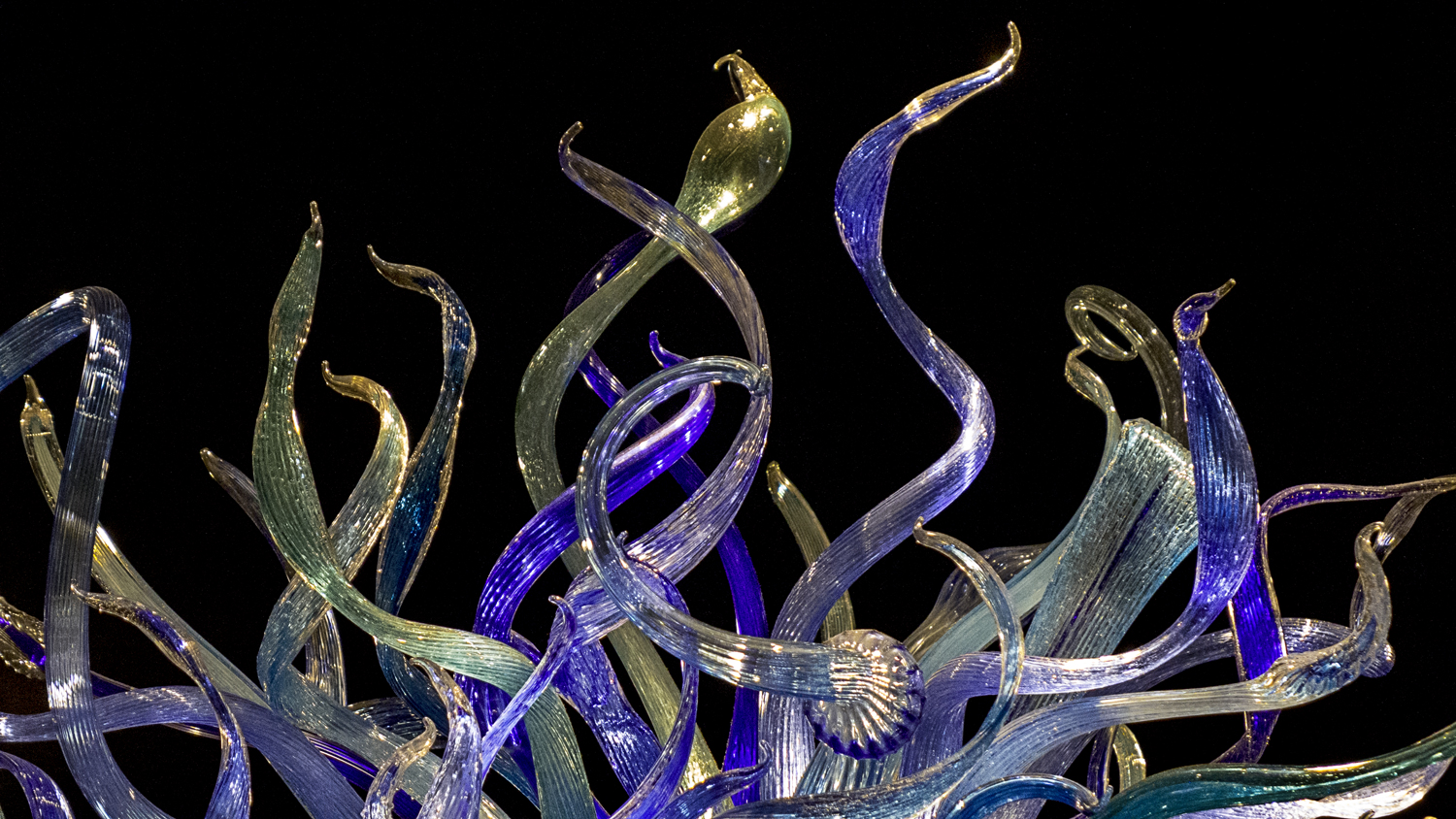 VicHuber-Website-ChihulyMuseum-L1240147.jpg