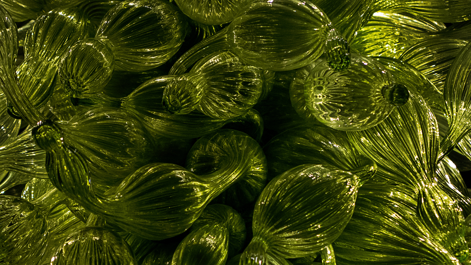VicHuber-Website-ChihulyMuseum-L1240233.jpg